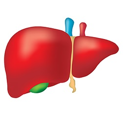 liver-cancer-treatment-types