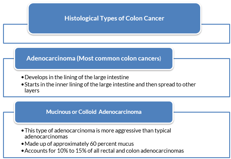 Types Of Colon Cancer Cancer Avenue