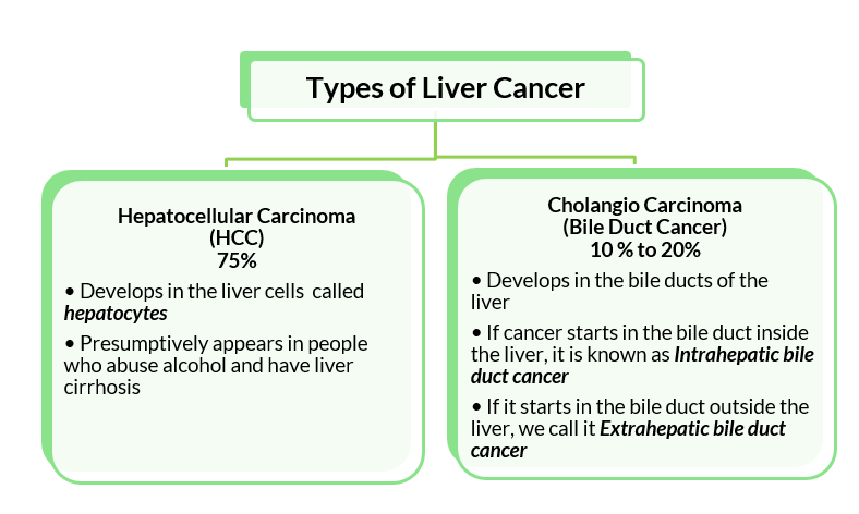 Types-of-liver-cancer-common