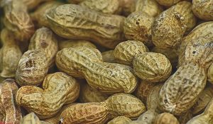 avoid-aflatoxins-in-3-foods-nuts